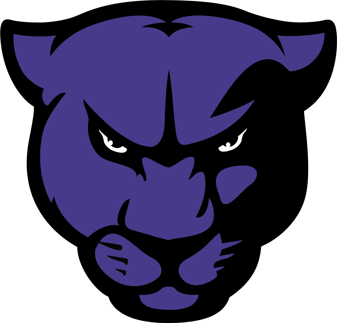 Panther Head TransparentBackground